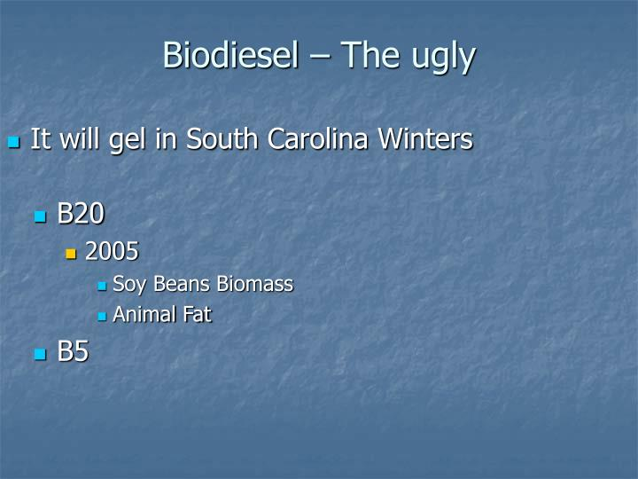 Biodiesel – The ugly