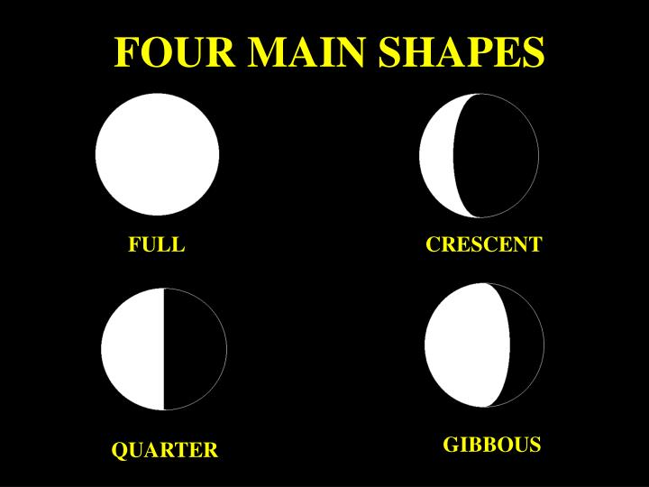 FOUR MAIN SHAPES
