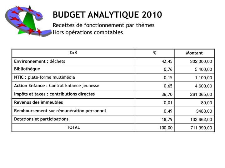 BUDGET ANALYTIQUE 2010