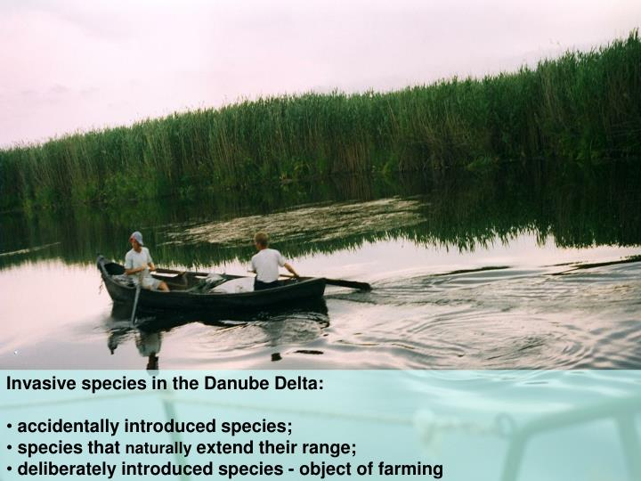 Invasive species in the Danube Delta: