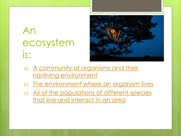 An ecosystem is: