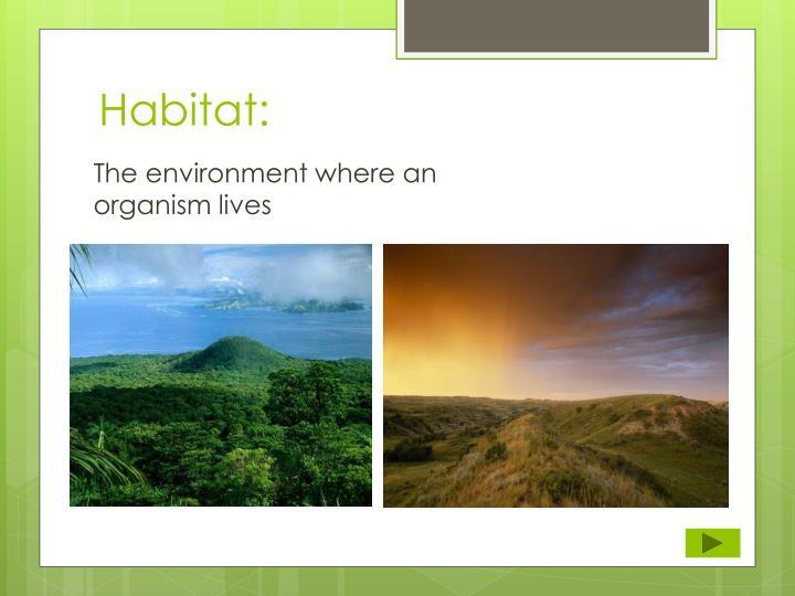 Habitat: