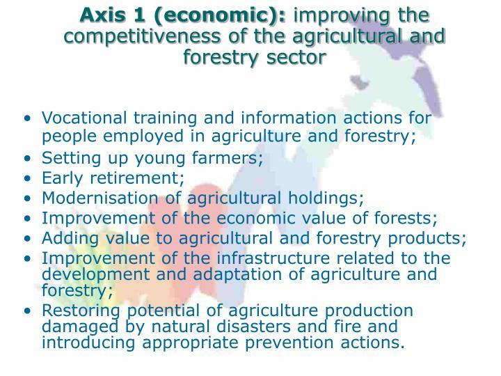 Axis 1 (economic):