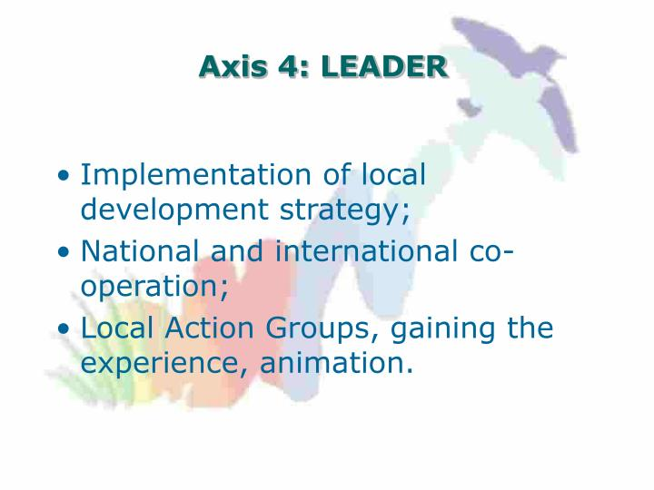 Axis 4: LEADER