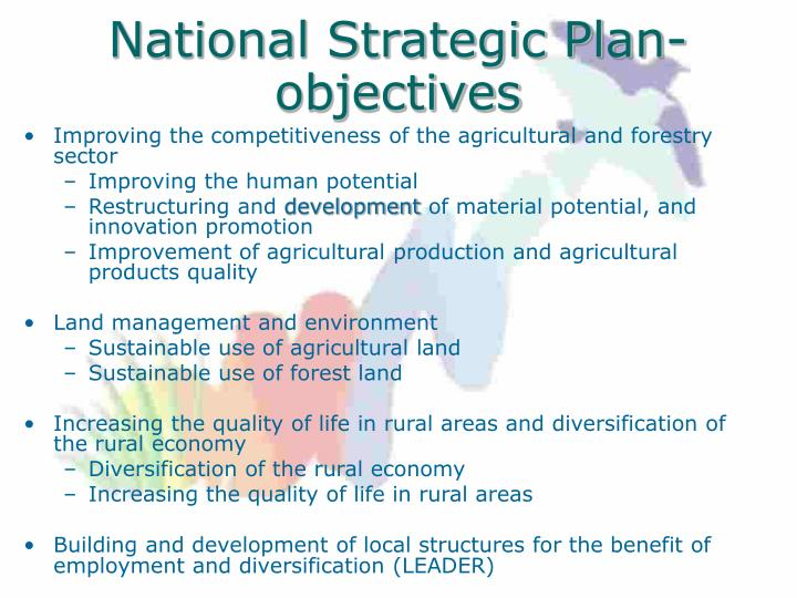 National Strategic Plan- objectives