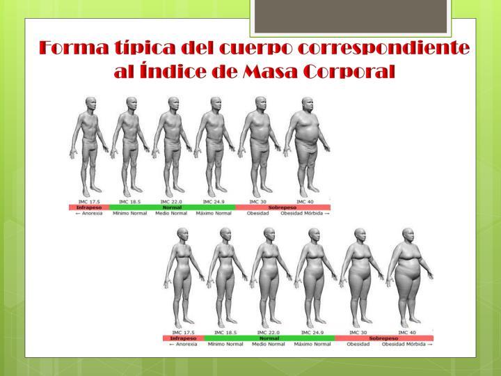 Forma típica del cuerpo correspondiente al Índice de Masa Corporal