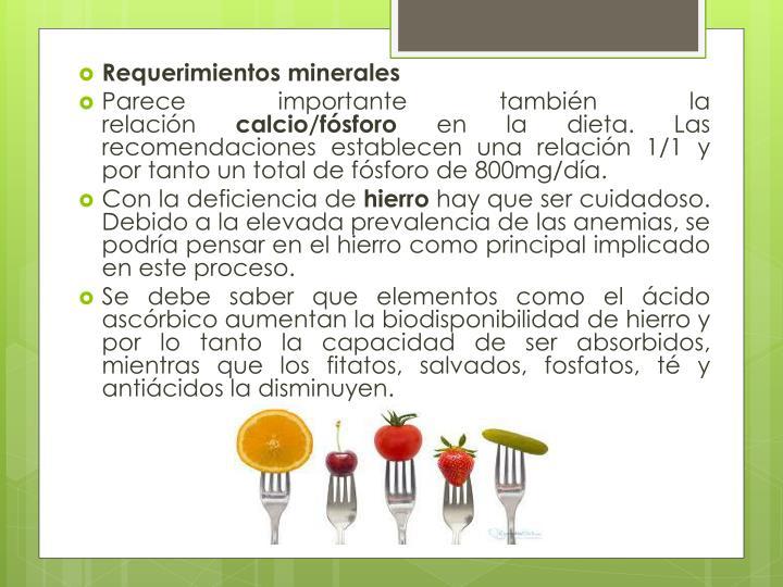 Requerimientos minerales
