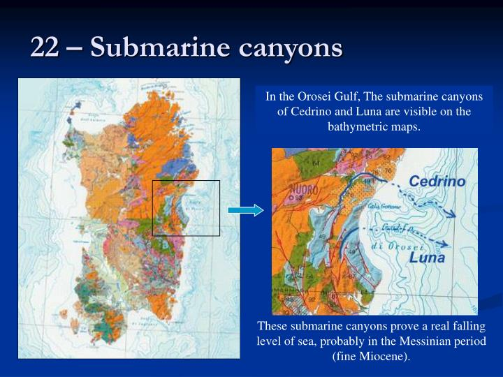 22 – Submarine canyons