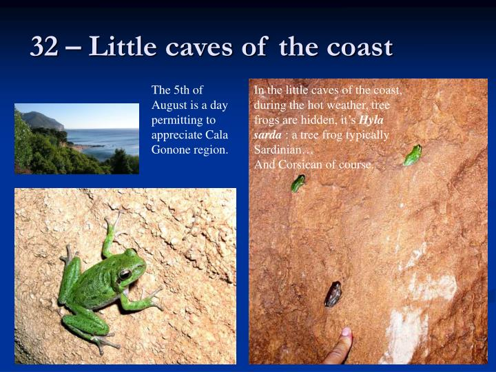 32 – Little caves of the coast