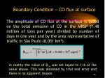 boundary condition co flux at surface