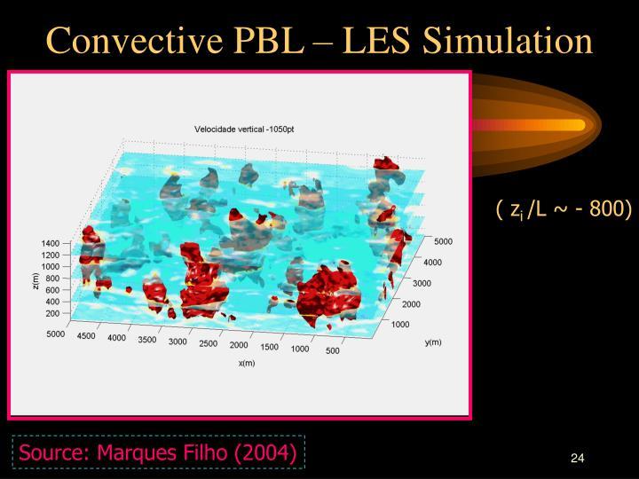 Convective PBL – LES Simulation