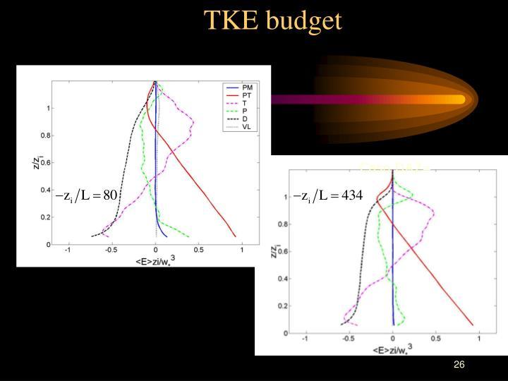 TKE budget