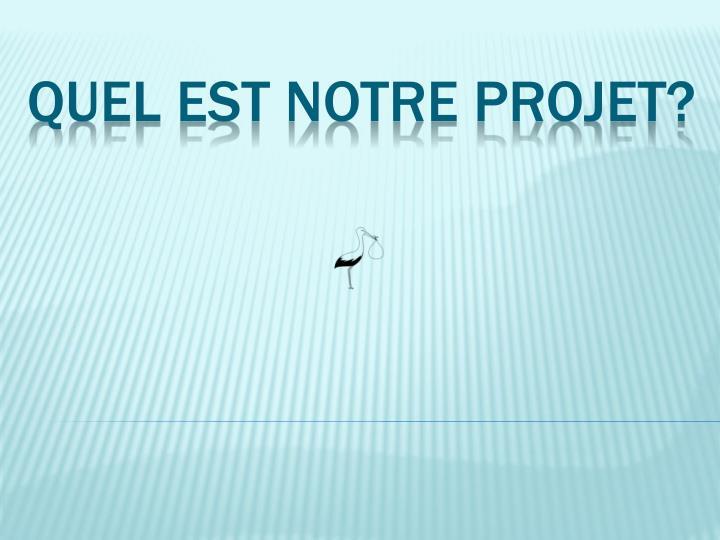 Quel est notre projet?