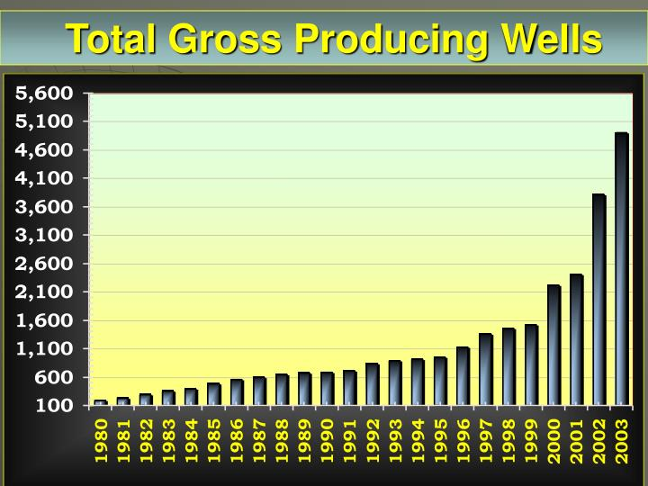 Total Gross Producing Wells