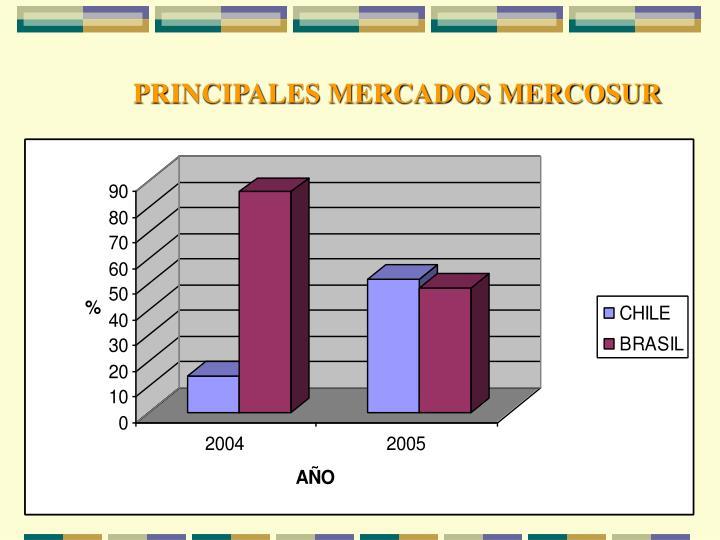 PRINCIPALES MERCADOS MERCOSUR