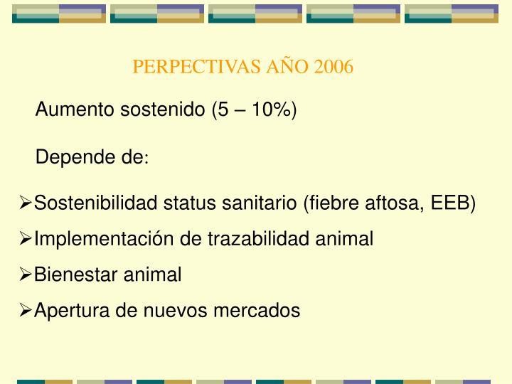 PERPECTIVAS AÑO 2006