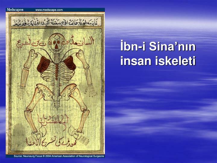 bn-i Sinann insan iskeleti