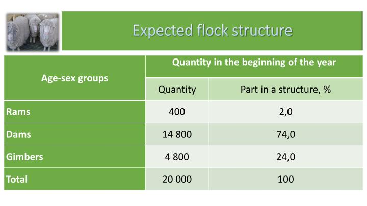 Expected flock structure