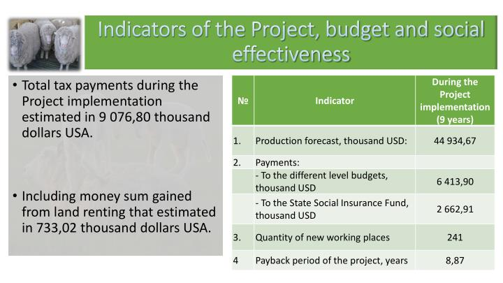Indicators of the Project, budget and social effectiveness