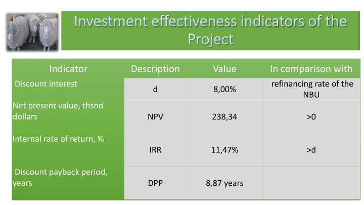 Investment effectiveness indicators of the Project