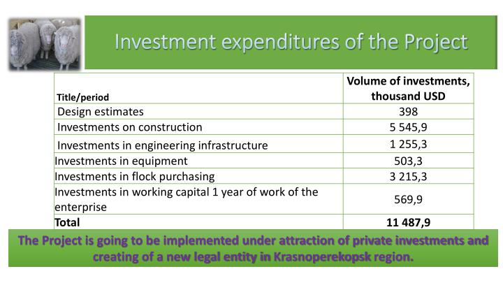 Investment expenditures of the Project