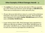other examples of moral damages awards 2