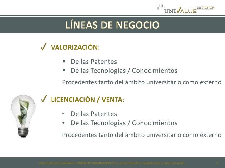 LÍNEAS DE NEGOCIO