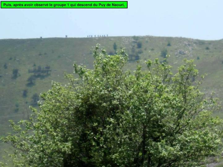 Puis, après avoir observé le groupe 1 qui descend du Puy de Naouri,