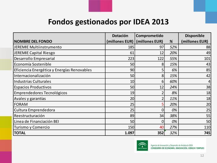 Fondos gestionados por IDEA 2013