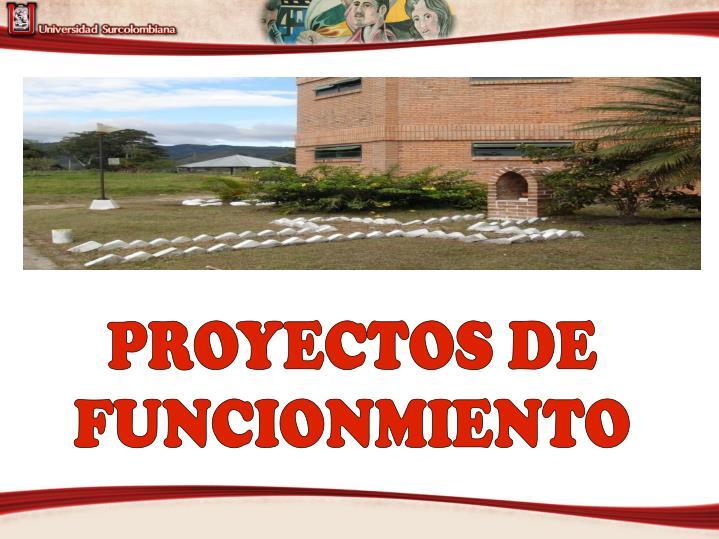 PROYECTOS DE