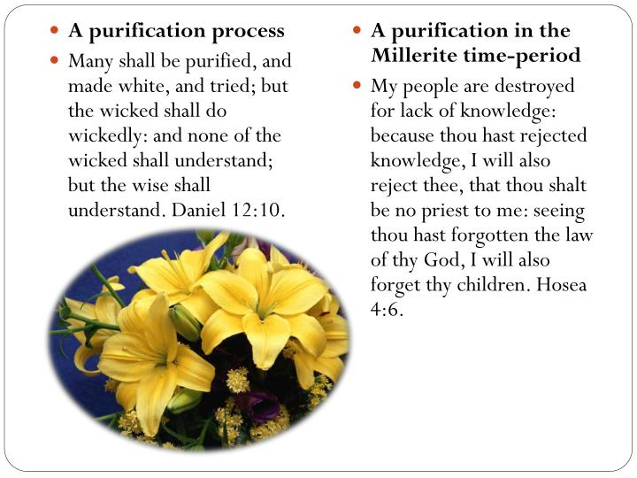 A purification process
