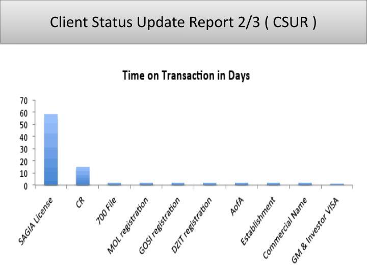 Client Status Update Report 2/3 ( CSUR )