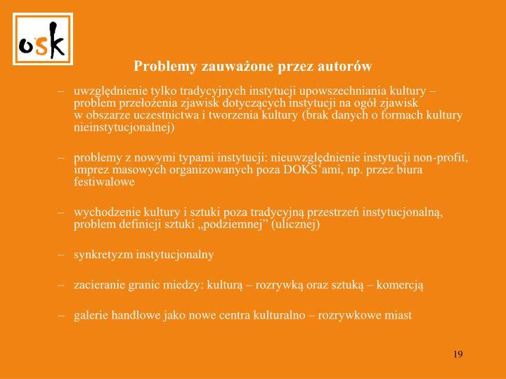 Problemy zauważone przez autorów