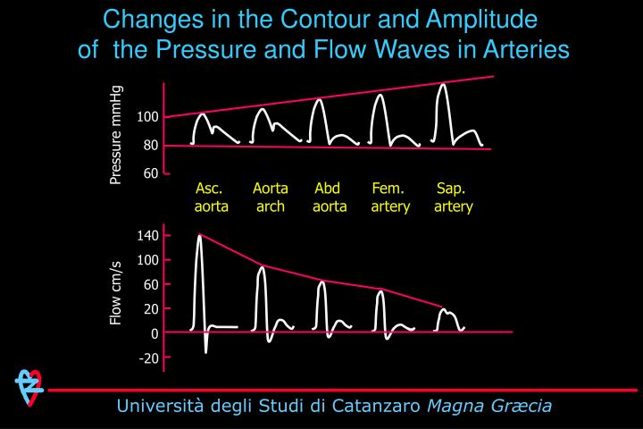 Changes in the Contour and Amplitude