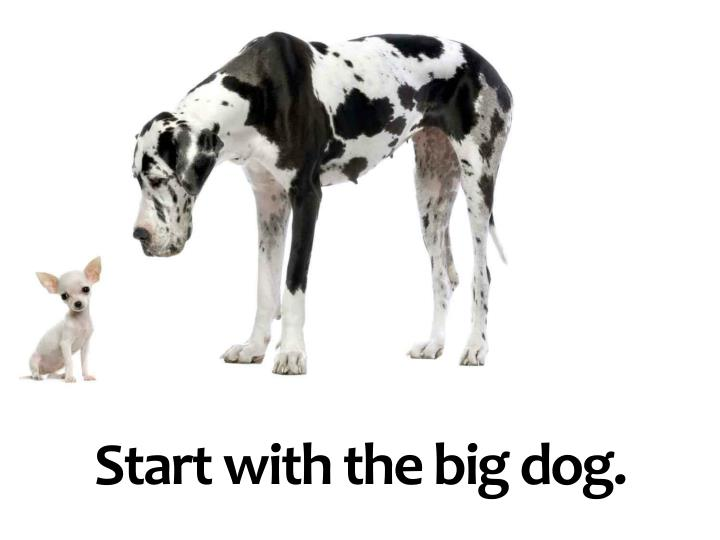 Start with the big dog.