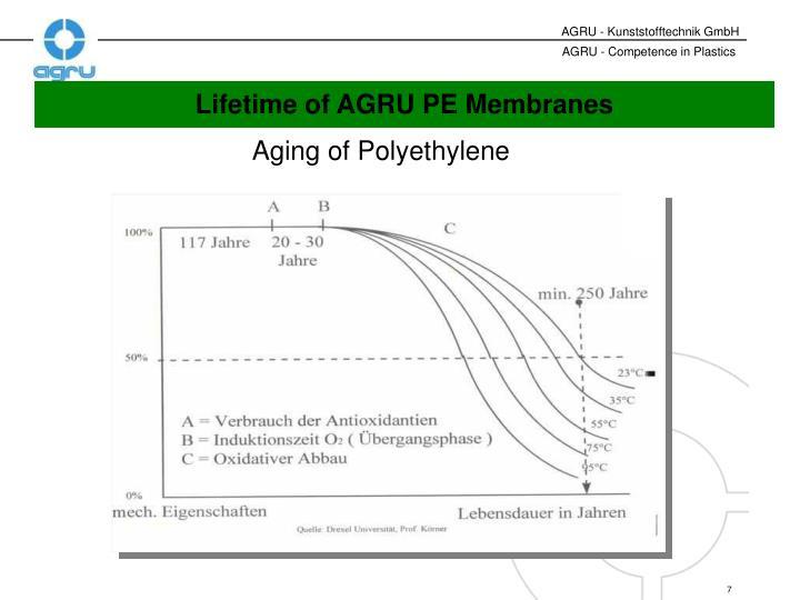 Aging of Polyethylene