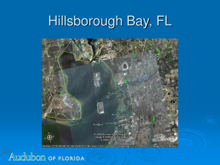 Hillsborough Bay, FL