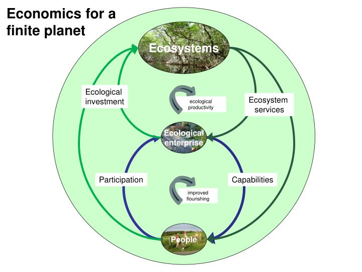 Economics for a finite planet