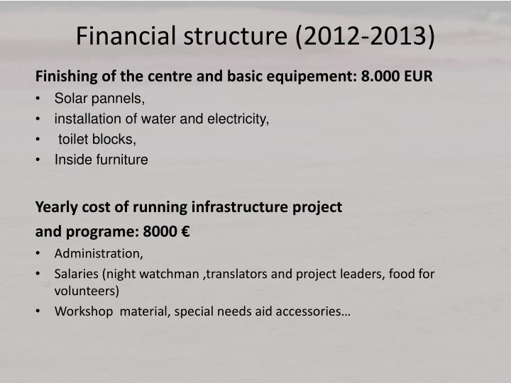 Financial structure (2012-2013)