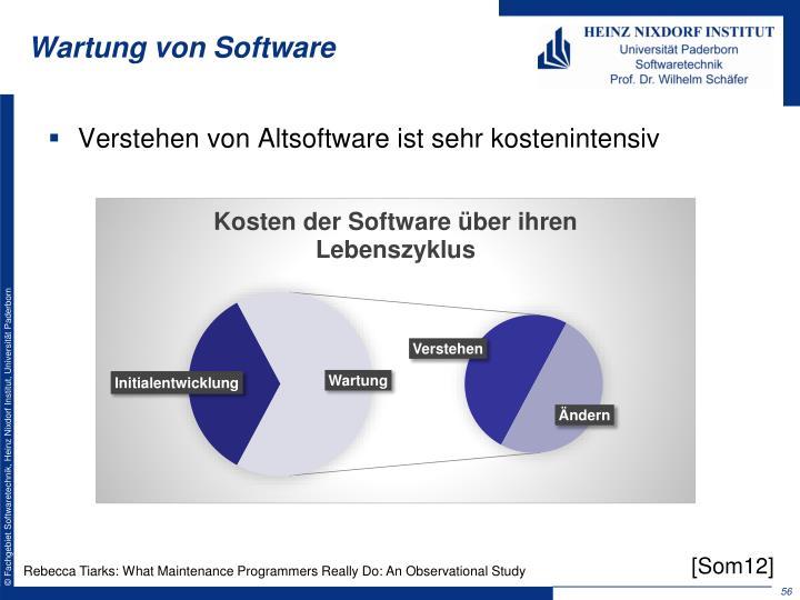 Wartung von Software