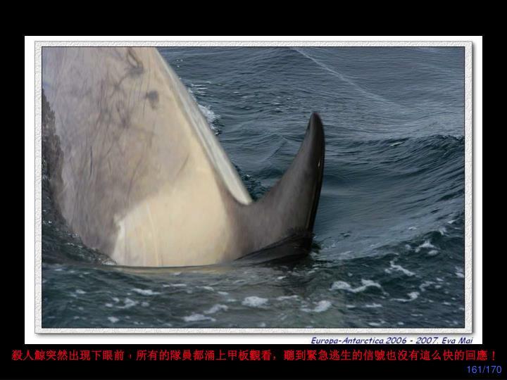 殺人鯨突然出現下眼前﹗所有的隊員都涌上甲板觀看,聽到緊急逃生的信號也沒有這么快的回應