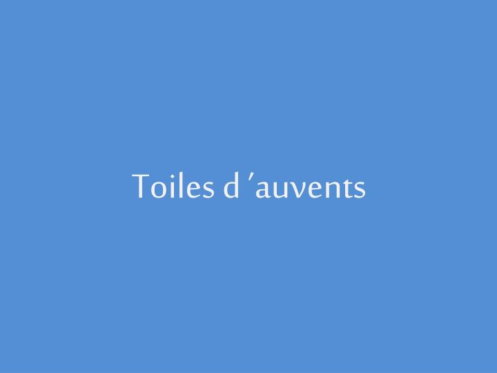 Toiles d 'auvents