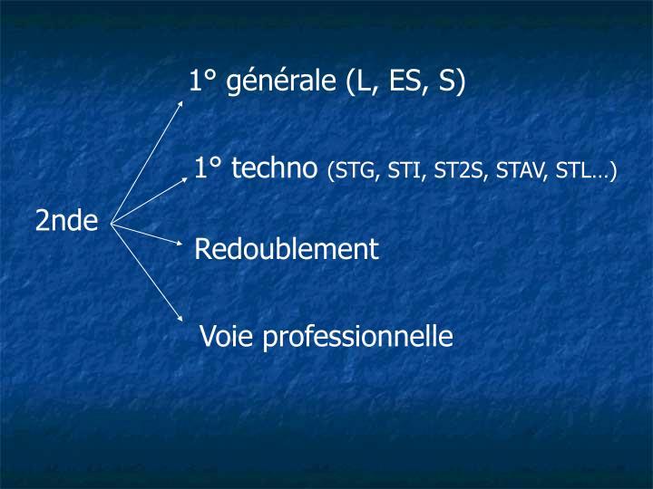 1° générale (L, ES, S)