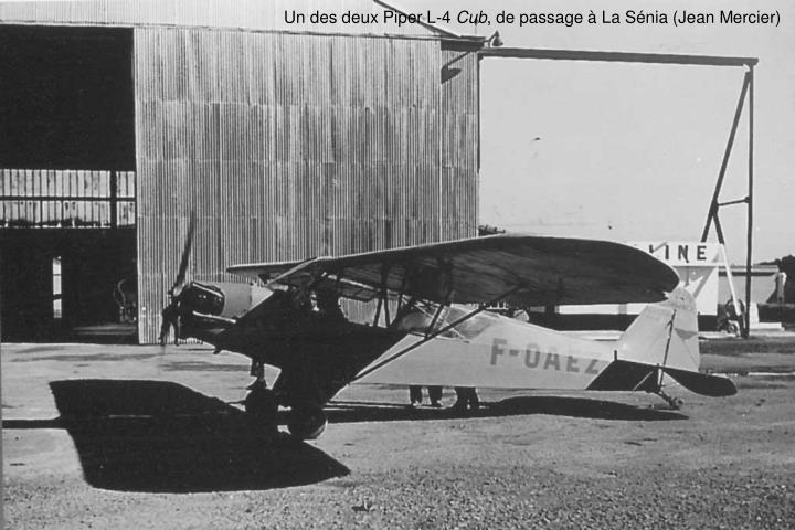 Un des deux Piper L-4