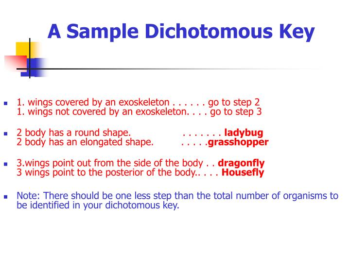 A Sample Dichotomous Key