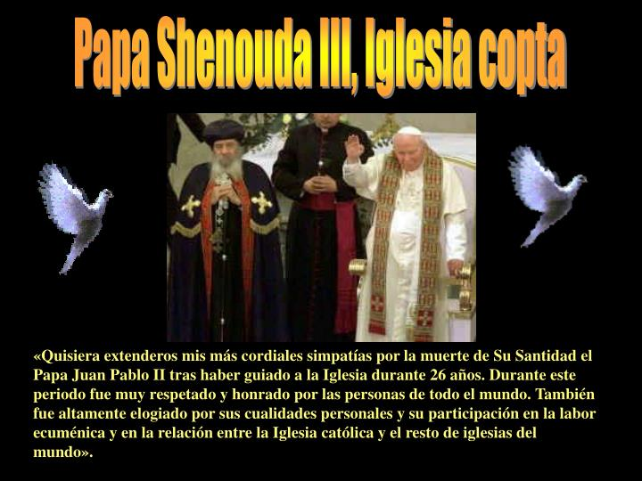 Papa Shenouda III, Iglesia copta