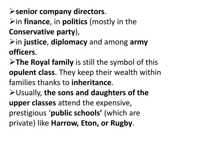 senior company directors