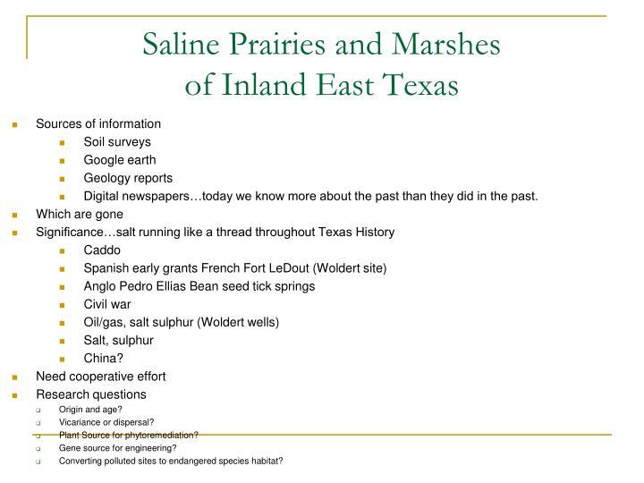 Saline Prairies and Marshes