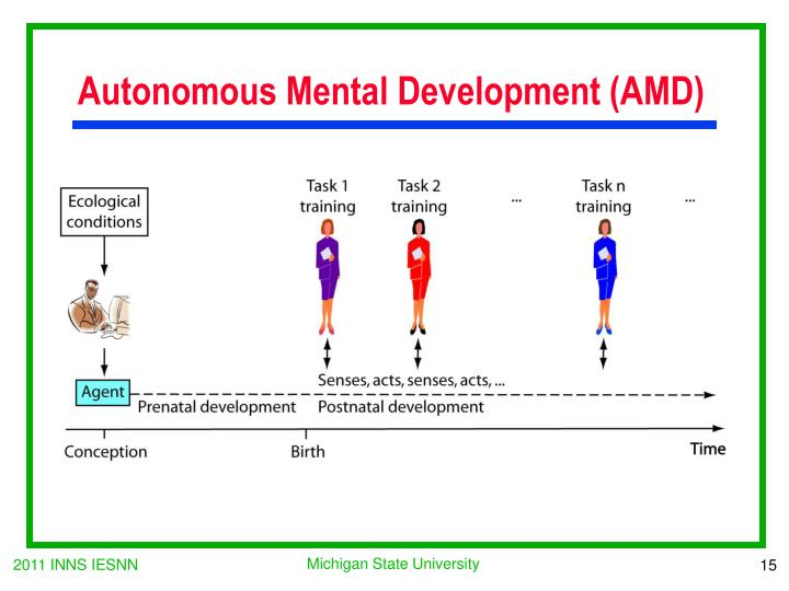Autonomous Mental Development (AMD)