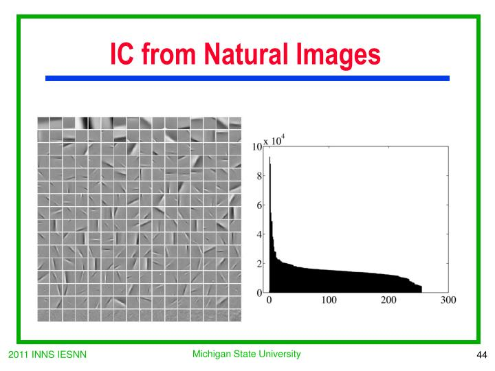 IC from Natural Images